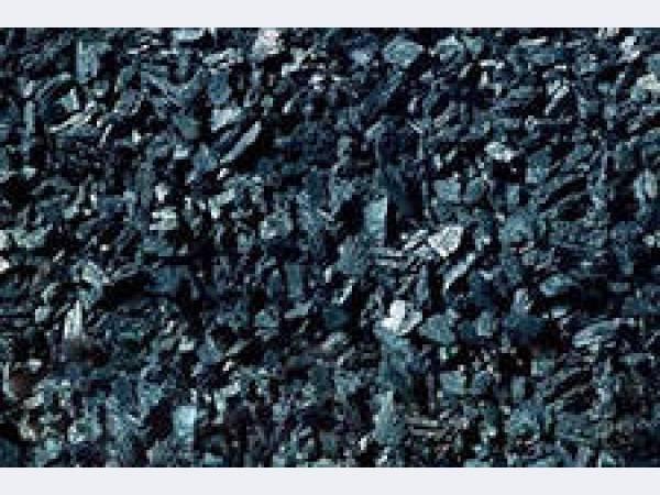 Продаем уголь древесный активный фракционный порошкообразный