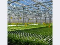 Комплекс подкормки растений углекислым газом в тепличных хозяйствах