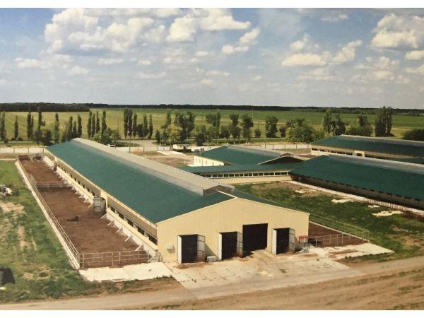 Строительство коровников и объектов сельскохозяйственного назначения
