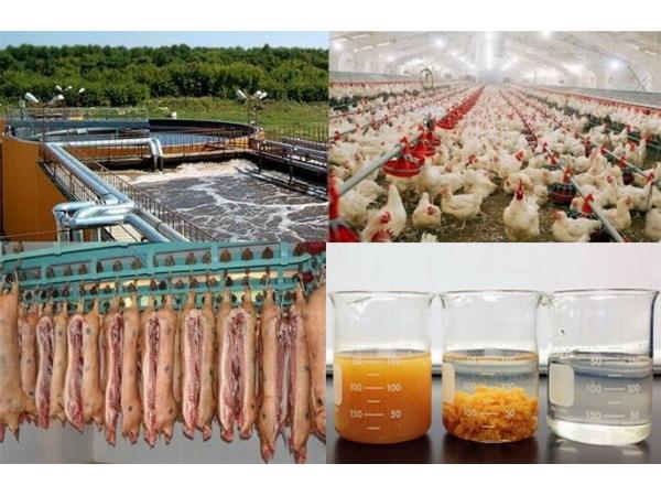 Реагенты (флокулянты) для очистных сооружений птицефабрик