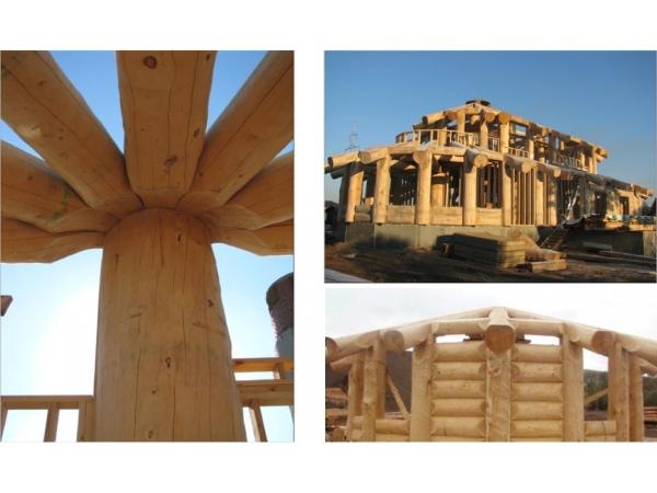 Рубленные дома и бани из Ангарской сосны и Сибирской лиственницы