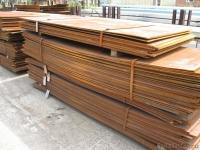 Продам лист стальной 8, 10, 12, 14мм