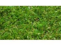 Искусственная трава арт. 35 GRASS ТР
