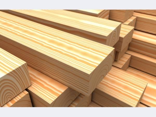 В Новосибирской области планируют развивать глубокую переработку древесины