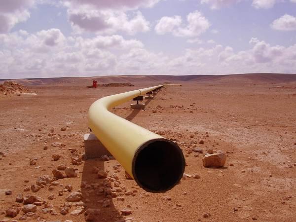 Оператор газопровода ищет поставщиков труб на $3 млрд