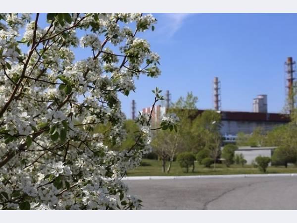 РУСАЛ снижает экологическую нагрузку в регионах присутствия