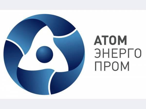 Атомный энергопромышленный комплекс, ОАО