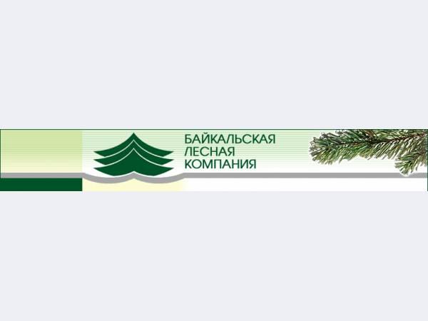 Байкальская лесная компания, ОАО